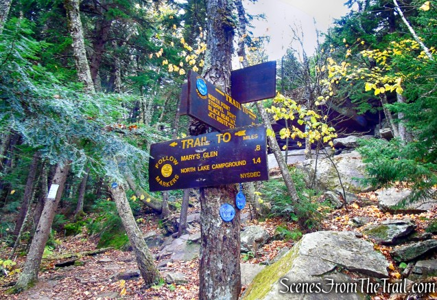 turn left on yellow-blazed Rock Shelter Trail