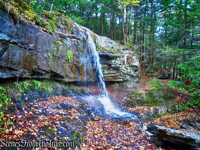 Ashley Falls