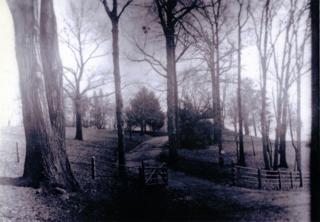 Cruger House Driveway 1900