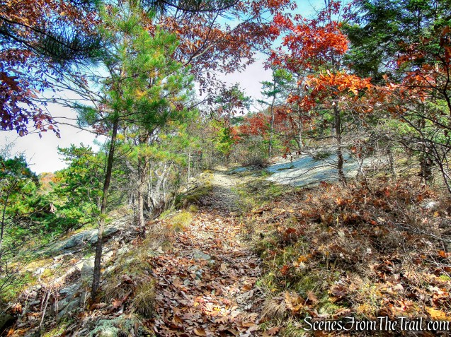Old Minnewaska Trail