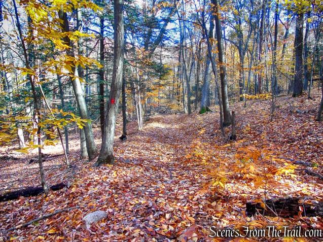 Stokes Trail