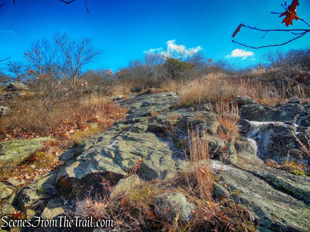 Fishkill Ridge Trail