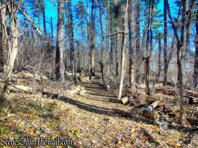 Blue Trail - Tarrytown Lakes