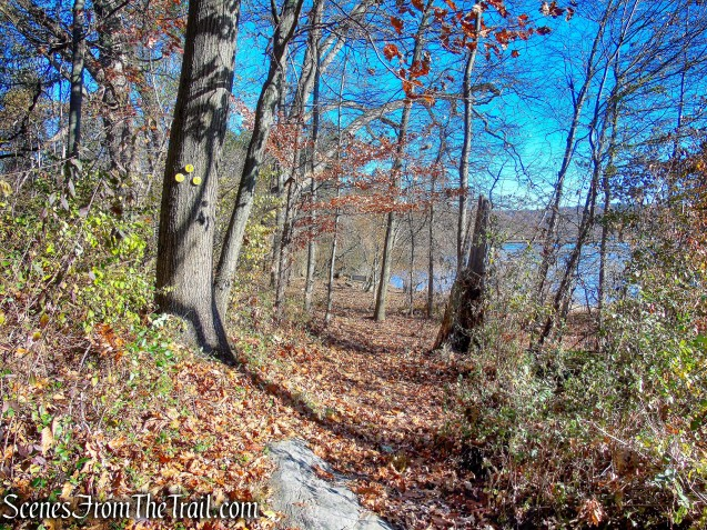Yellow Trail - Tarrytown Lakes