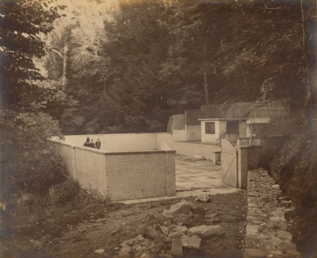 Fish House Spring