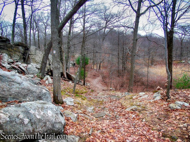 Tuxedo-Mt. Ivy Trail