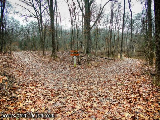 Eleanor's Walk & Top Cottage Trail