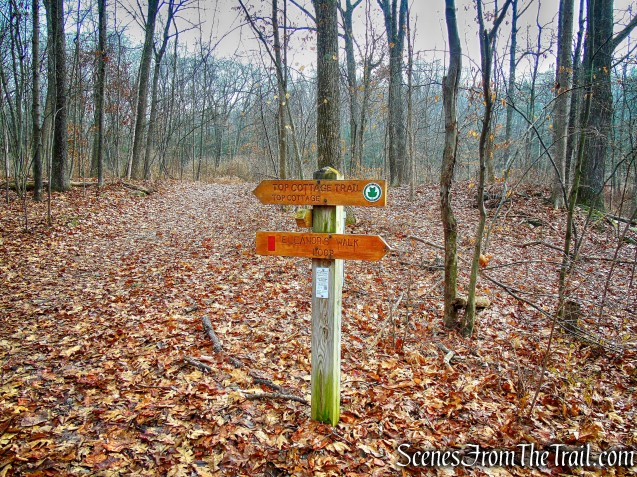 turn right on Top Cottage Trail