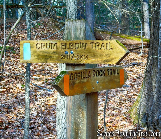 junction with Crum Elbow Trail