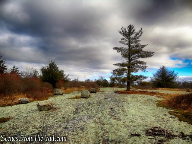 Bowling Rocks - Dunning Trail