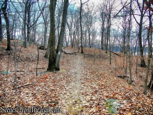 Trail 1 - George's Island Park
