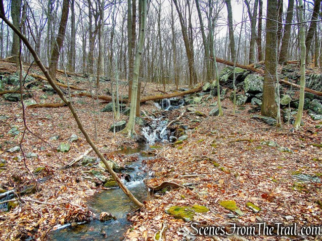 Crook Brook - Blue Trail - Mountain Lakes Park
