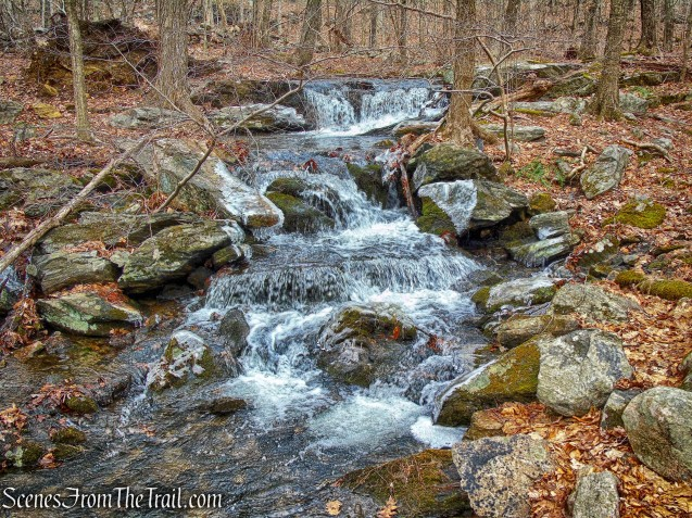 Crook Brook - Red Trail - Mountain Lakes Park