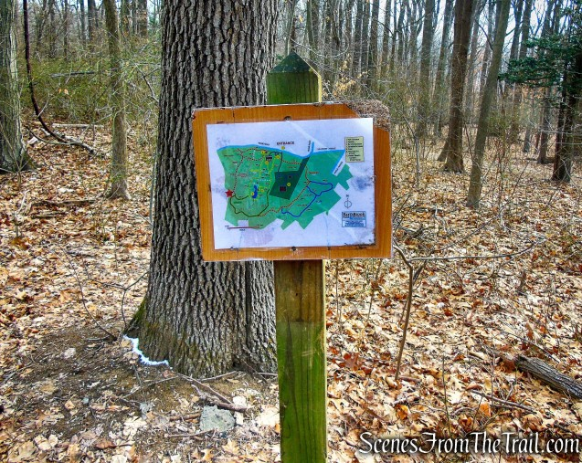 junction of Red & Green Trails - Hart's Brook Park and Preserve