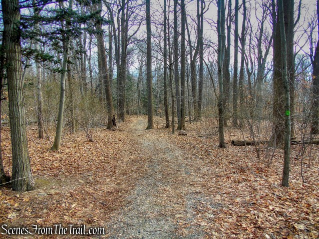 Green Trail - Hart's Brook Park and Preserve