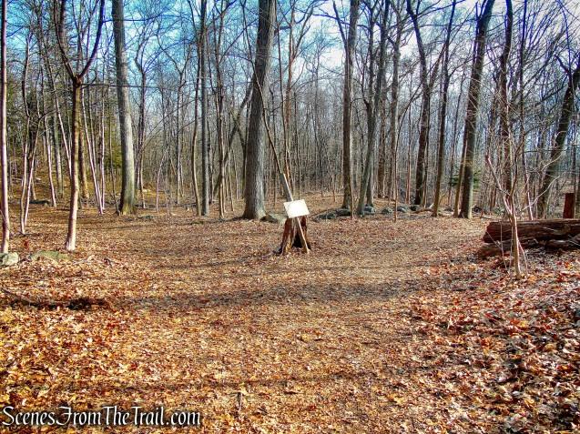junction of Orange & Blue Trails - Hart's Brook Park and Preserve