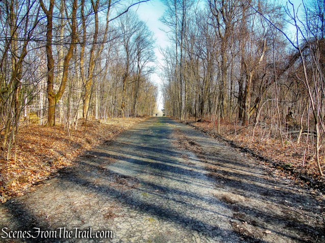 Blue Trail - Hart's Brook Park and Preserve