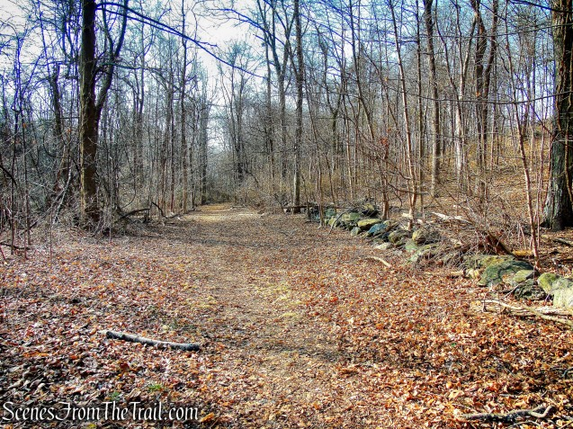 Orange Trail - Hart's Brook Park and Preserve