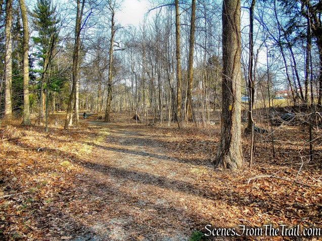 Yellow Trail - Hart's Brook Park and Preserve