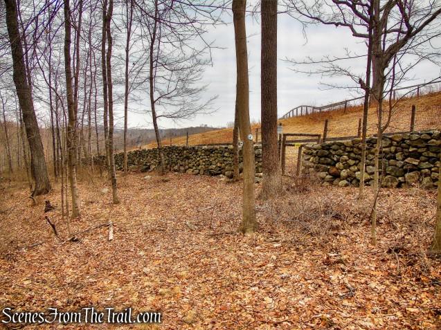 White Trail - Halmi Preserve