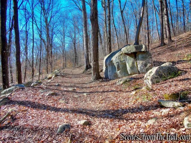 Monks Trail
