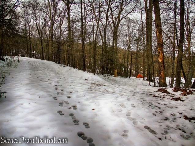 Appalachian Trail leaves to the right