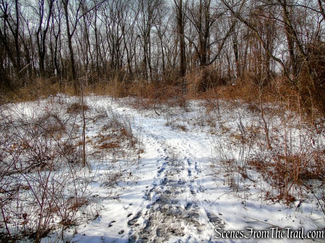 Nature Trail - Rockefeller State Park Preserve