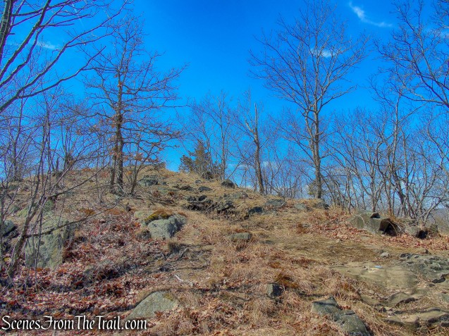 approaching Whitney Peak summit - Yellow Trail - East Rock Park