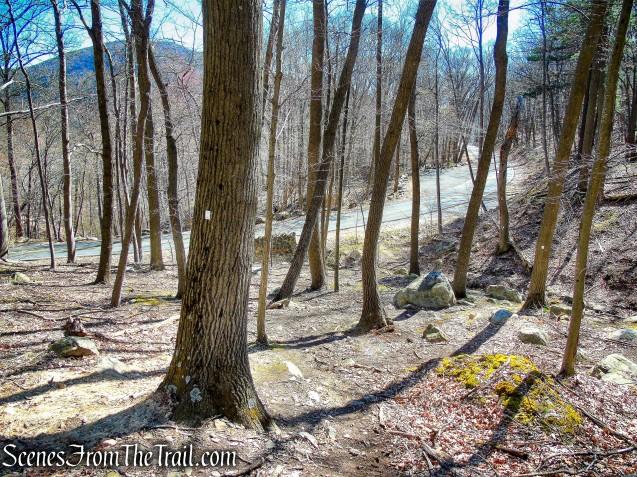 Stillman Spring Trail