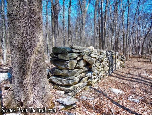 Mead Farm Ruins