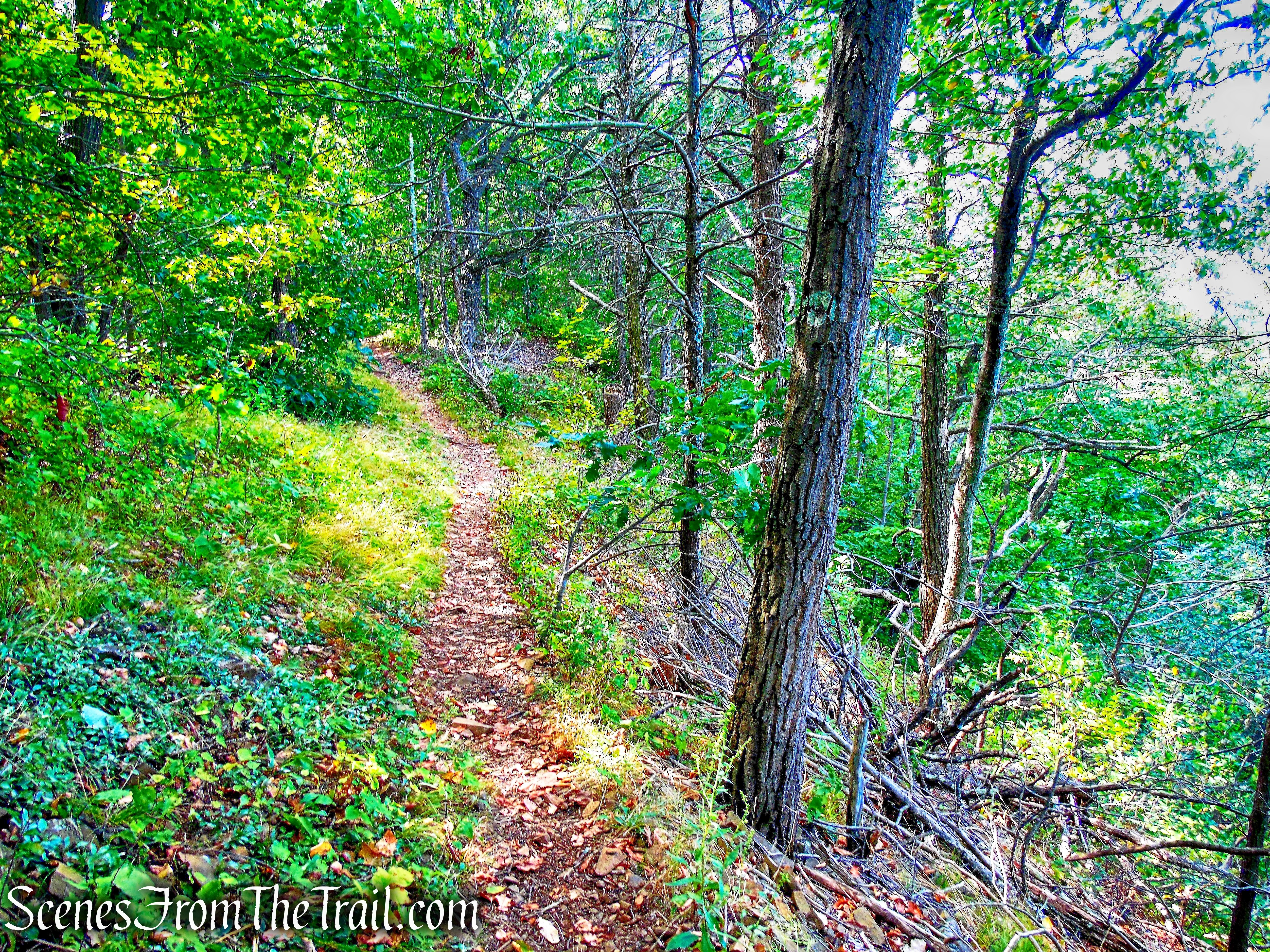 Mattabesett Trail - Besek Mountain