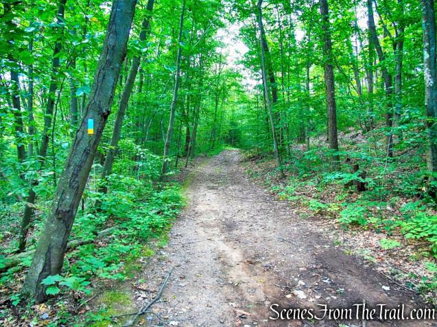 Cream Pot Road Access Trail - Mica Ledges Preserve