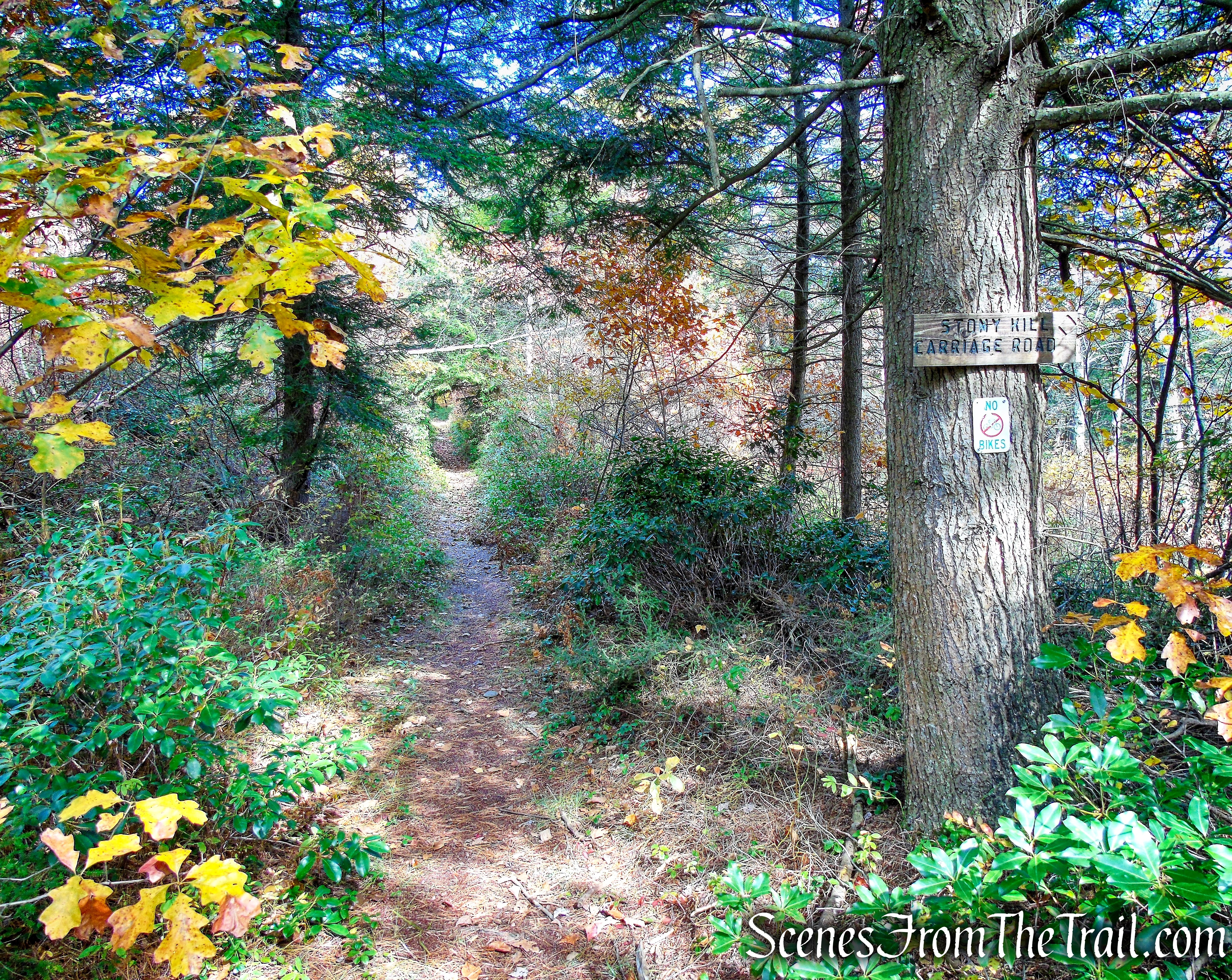 Stony Kill Carriage Road - Minnewaska State Park Preserve