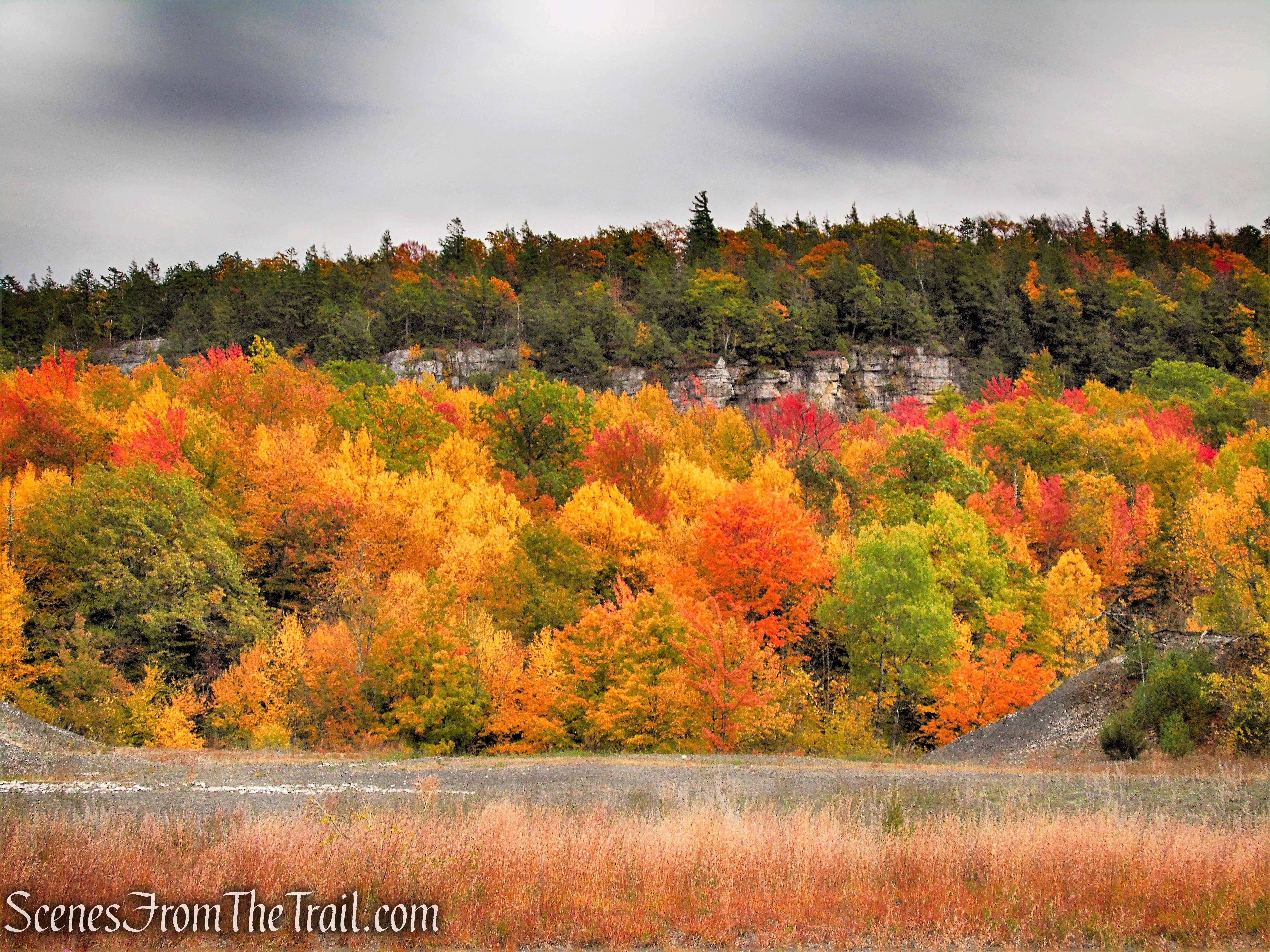Stony Kill Falls Trailhead - Minnewaska State Park Preserve