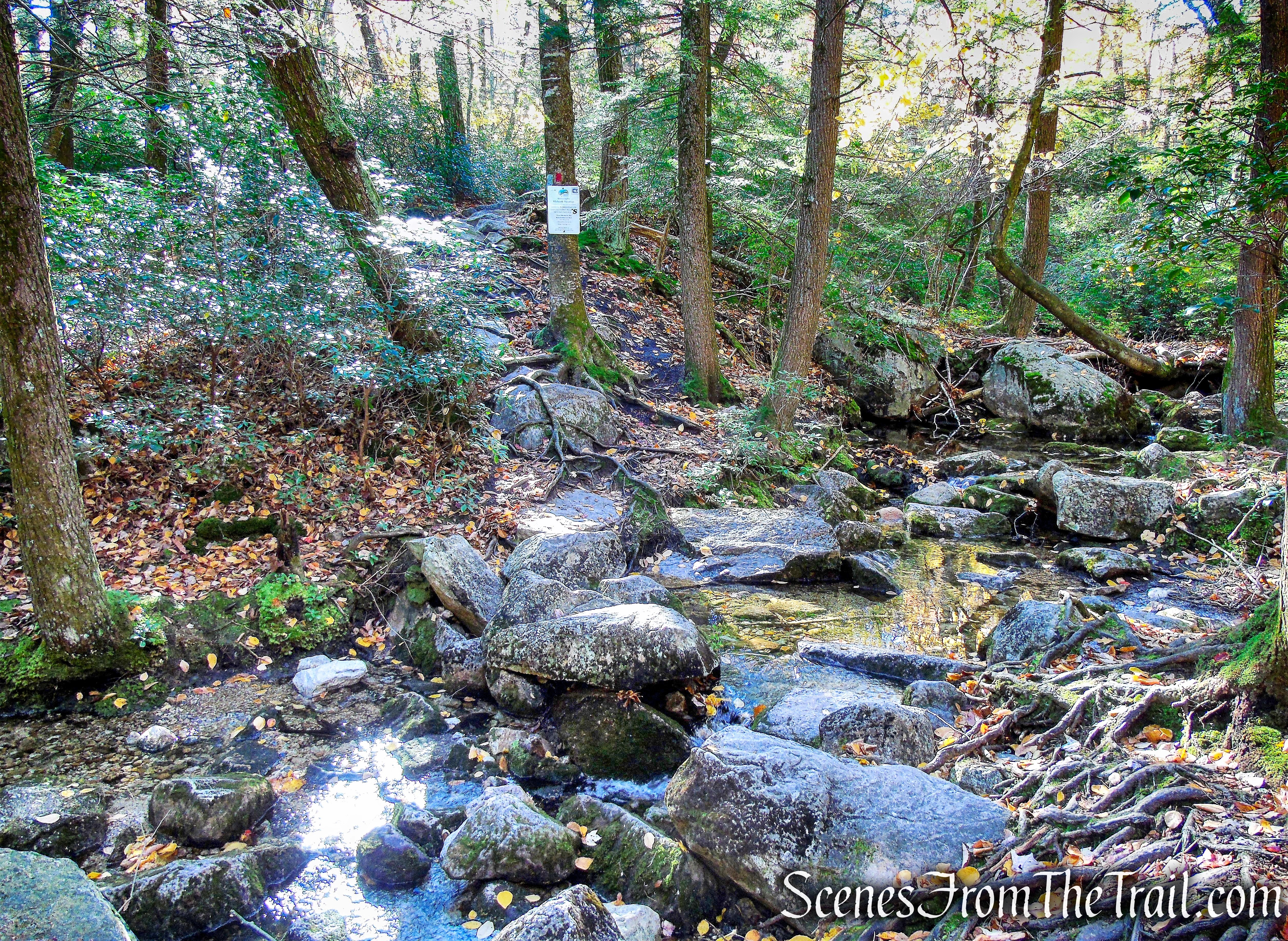 Coxing Kill - Millbrook Mountain Footpath