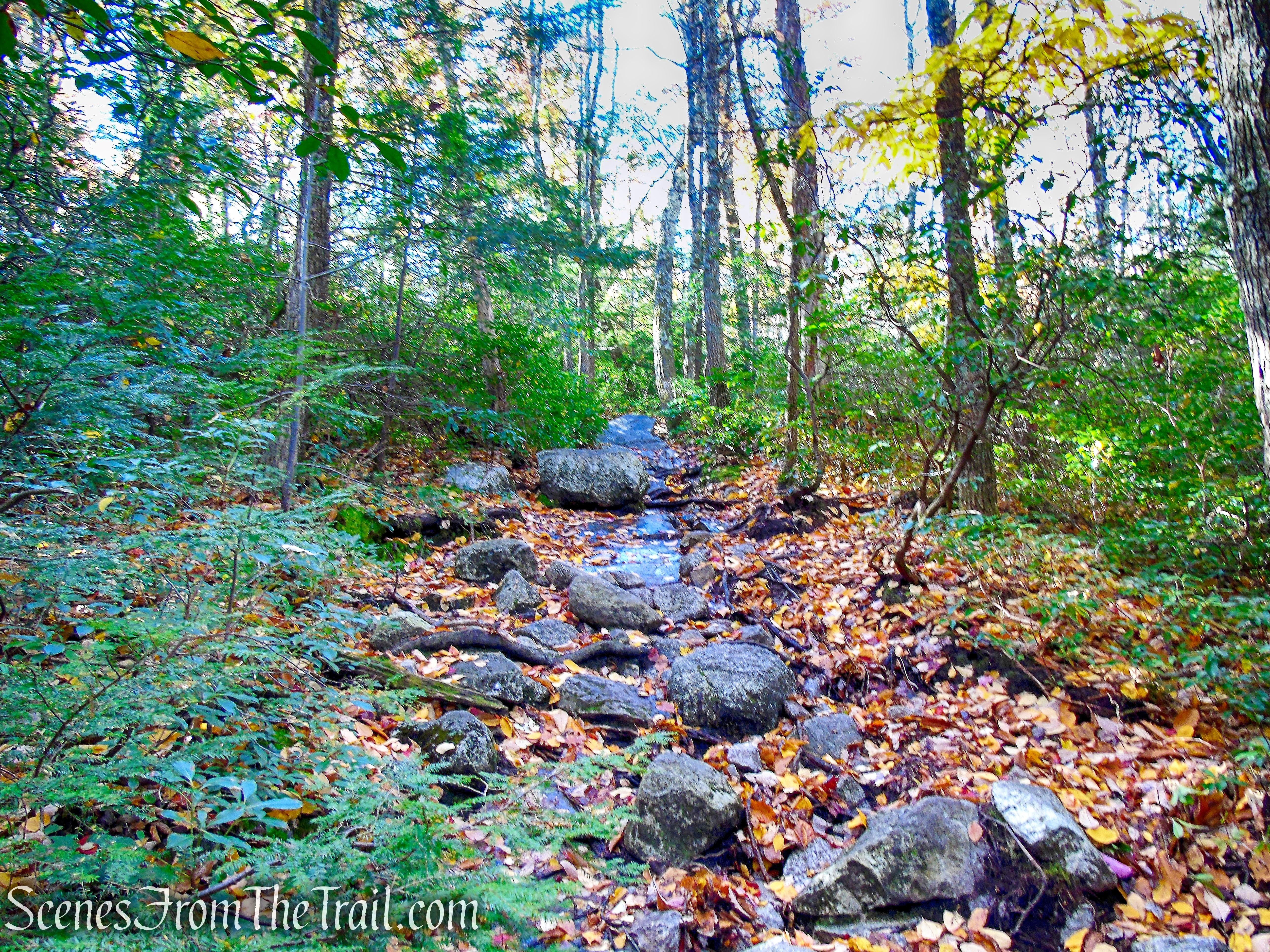 Millbrook Mountain Footpath - Minnewaska State Park Preserve