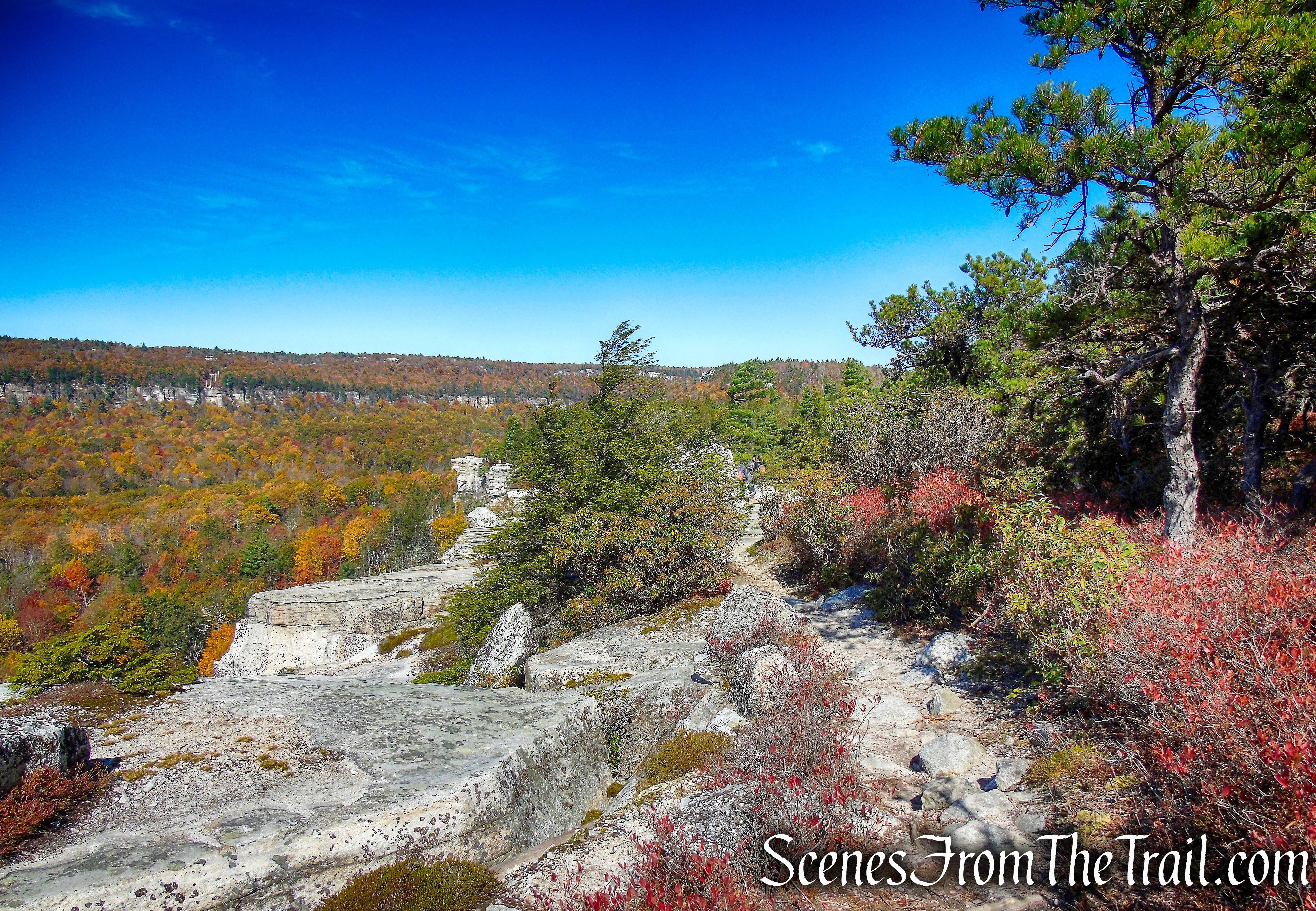 Gertrude's Nose Footpath - Minnewaska State Park Preserve