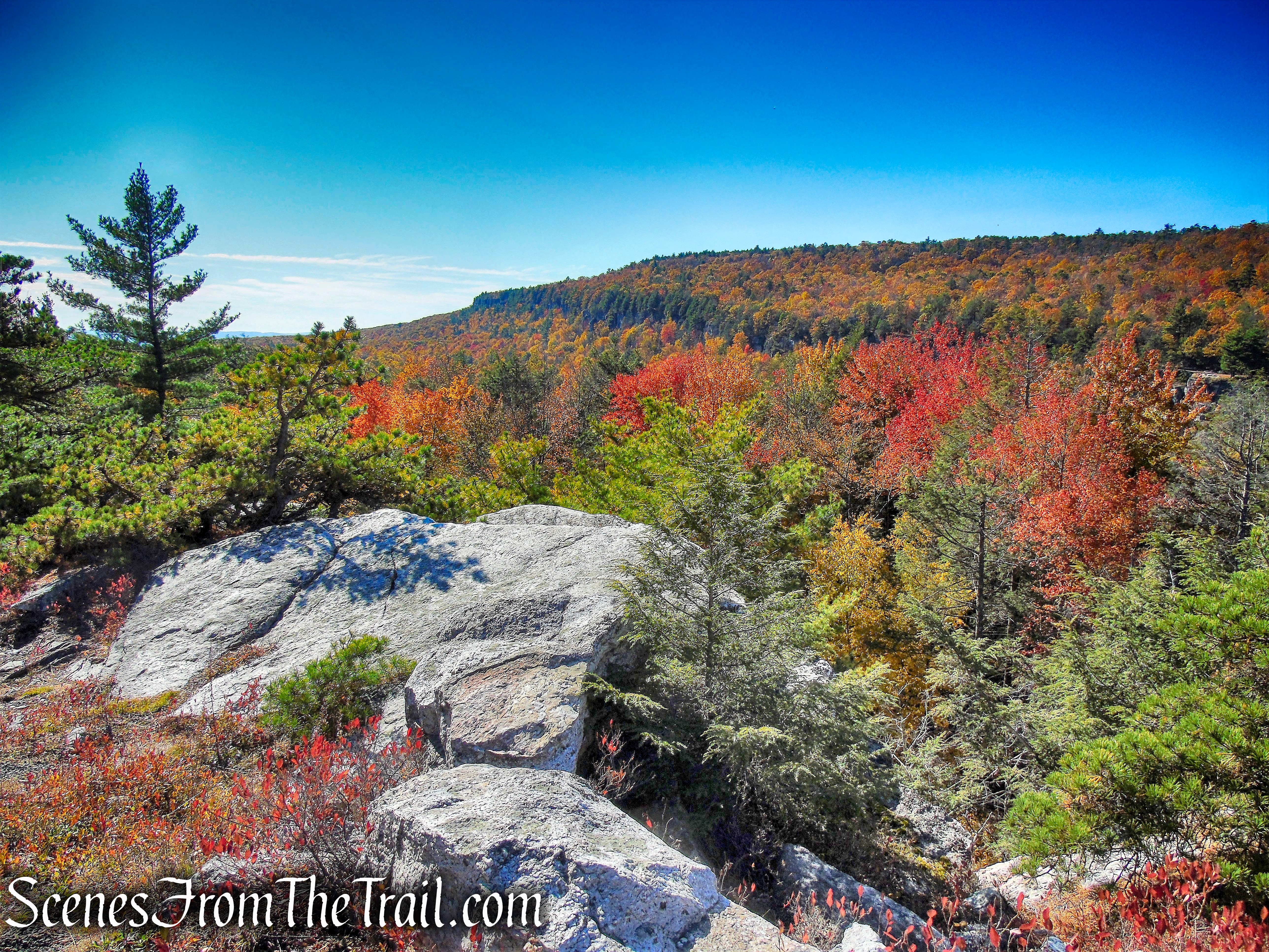 Millbrook Mountain Carriage Road - Minnewaska State Park Preserve