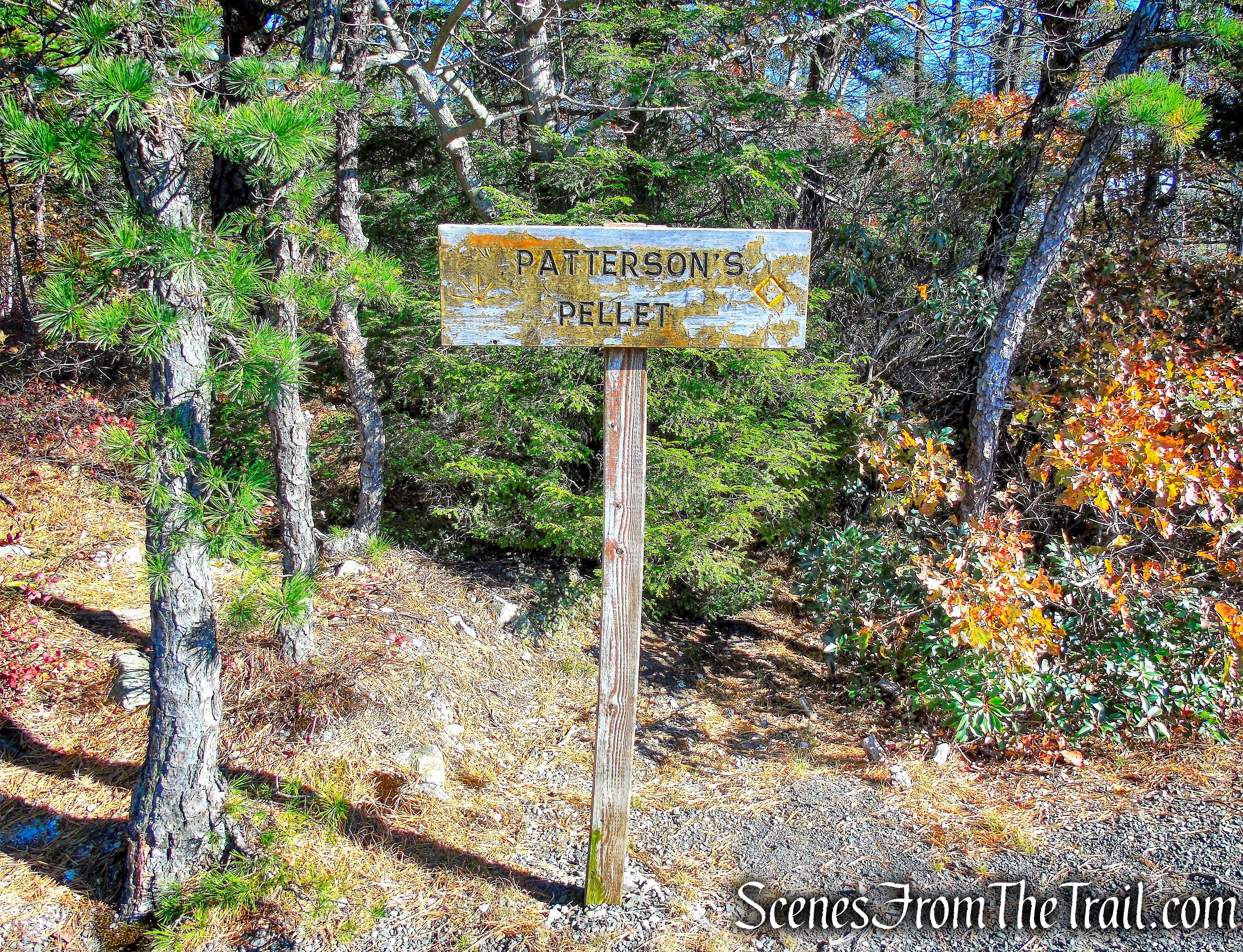 Patterson's Pellet - Millbrook Mountain Carriage Road