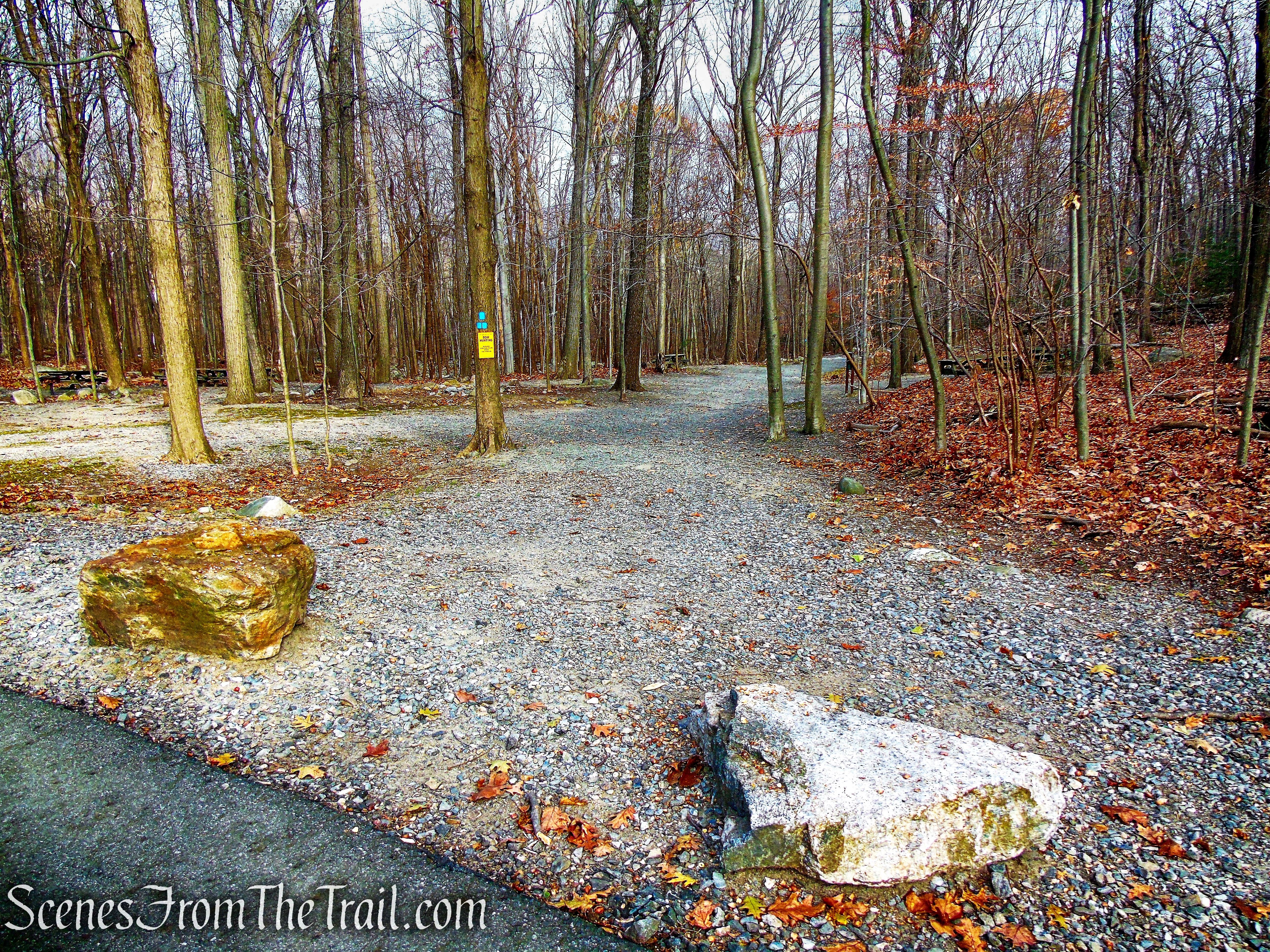 Blue Trail - Silas Condict County Park