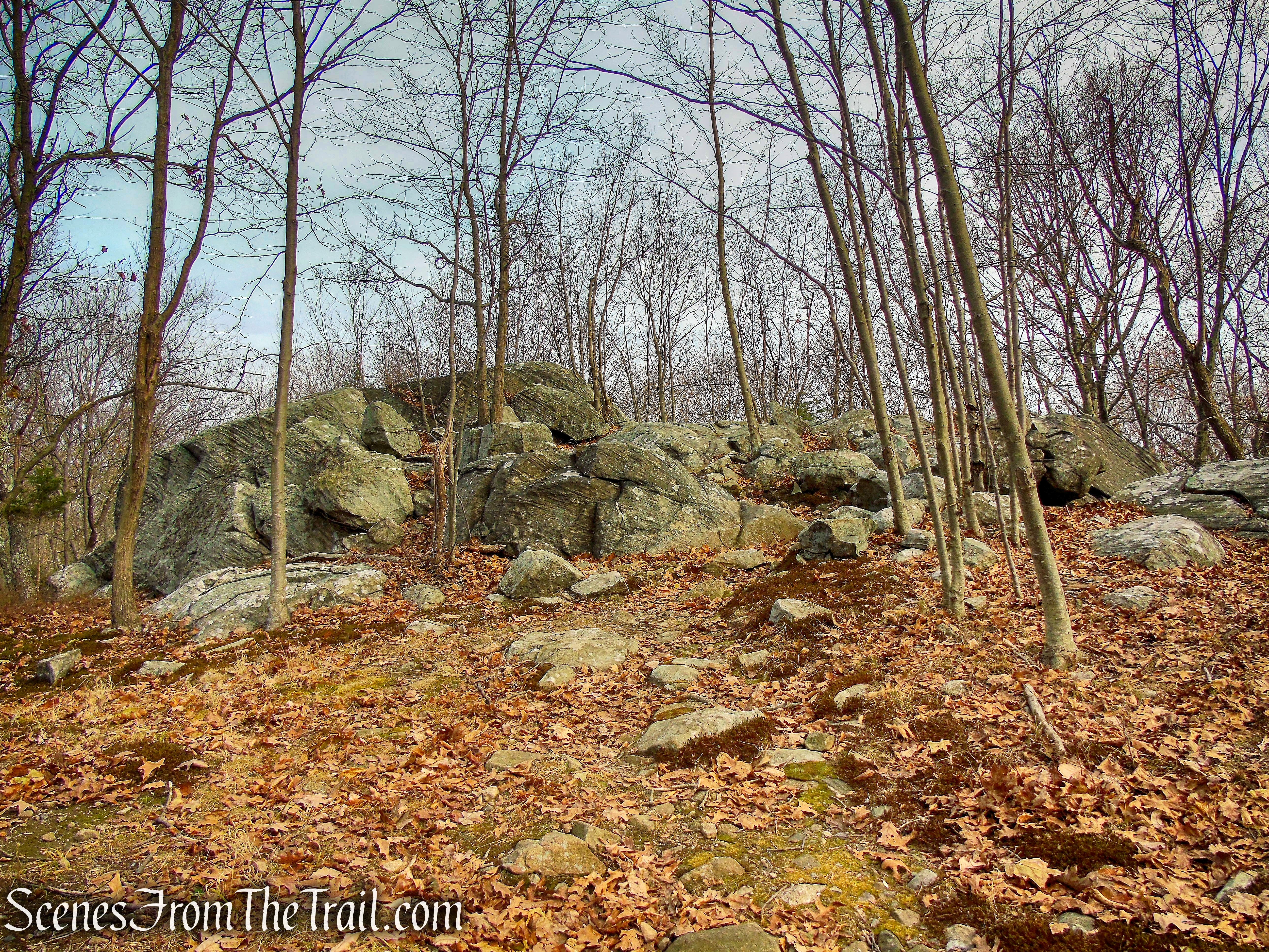 rock outcrop above Red Trail - Silas Condict County Park
