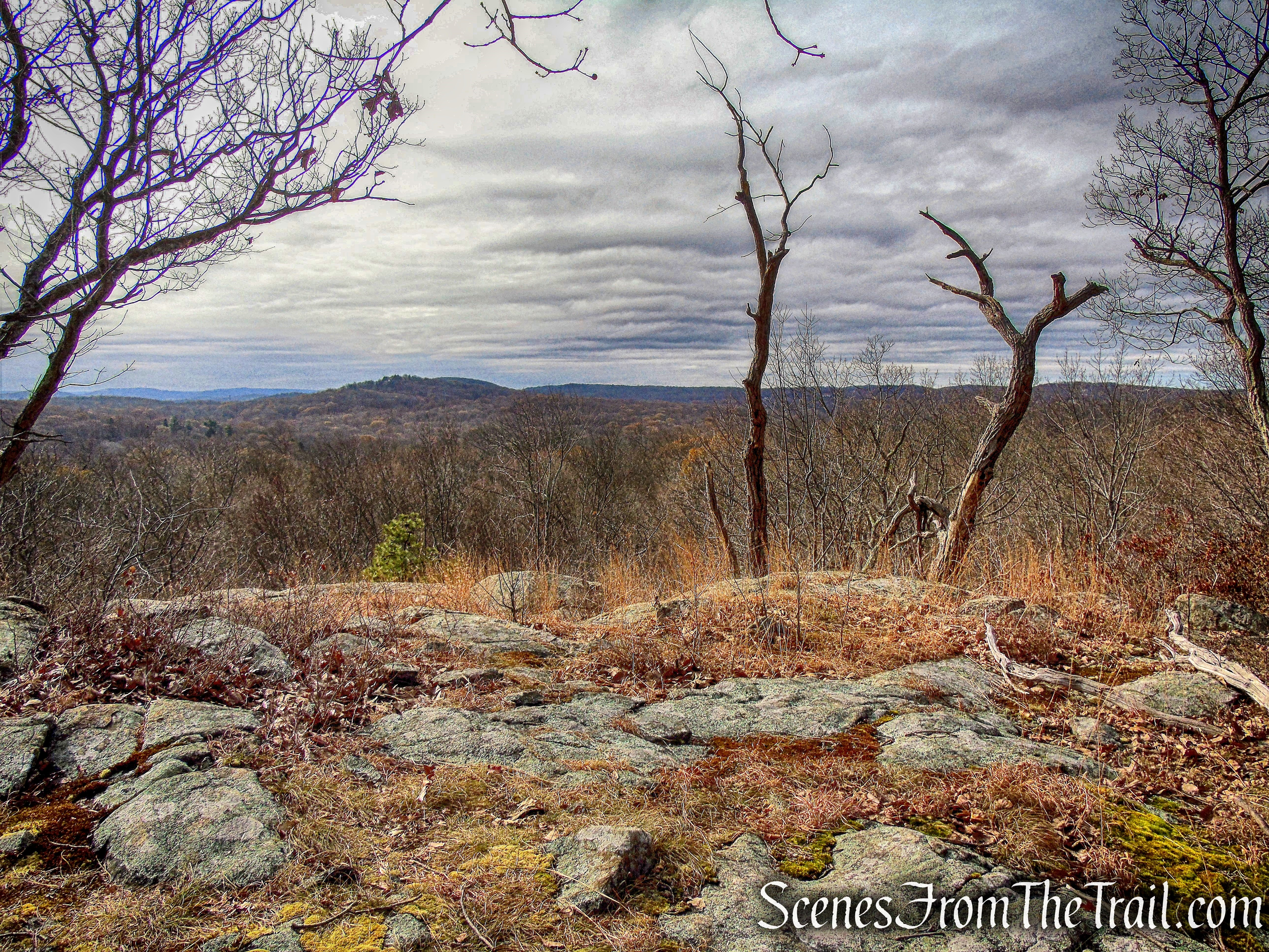 Scenic Overlook - White Trail - Silas Condict County Park