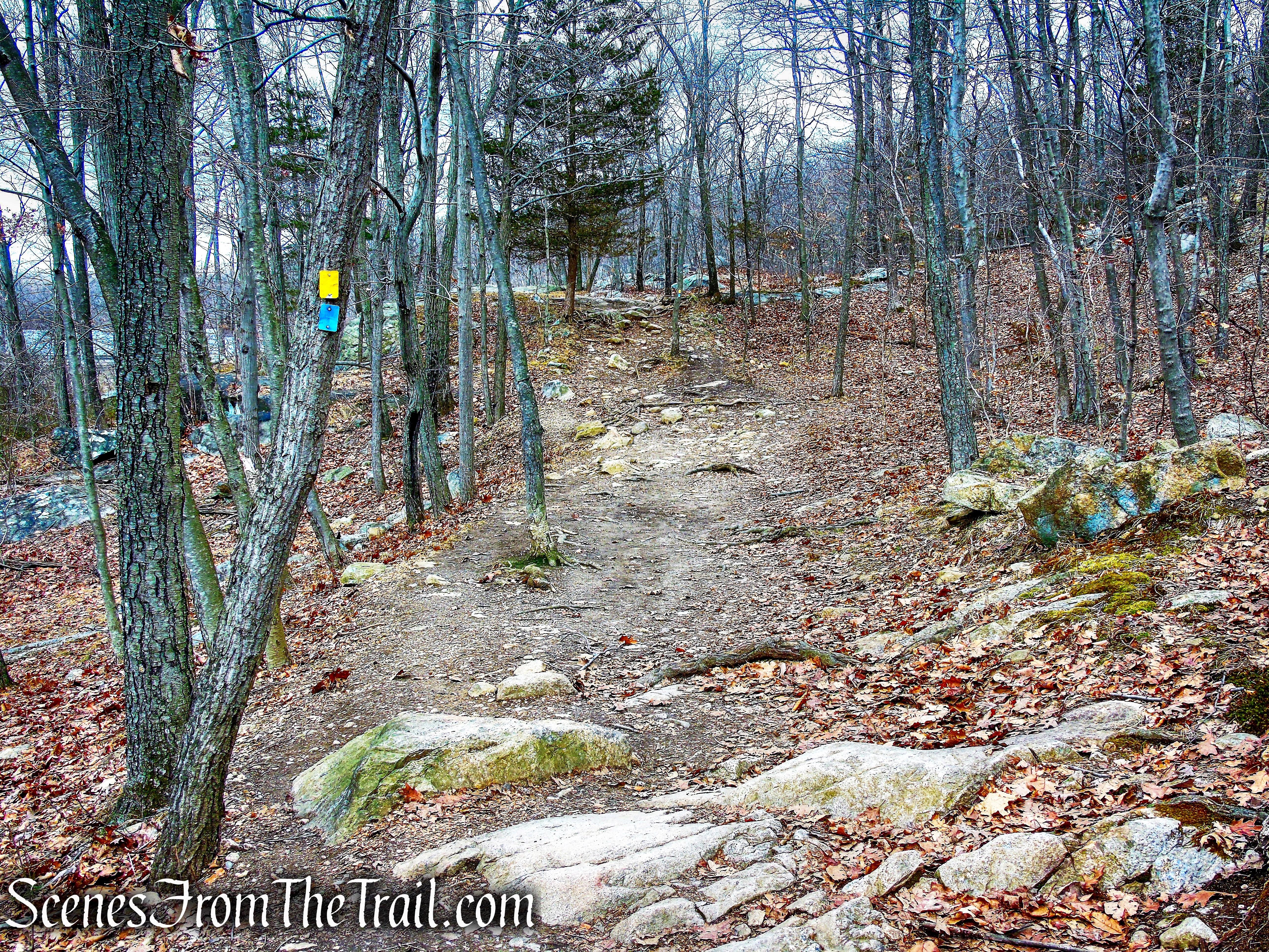 MacEvoy Trail