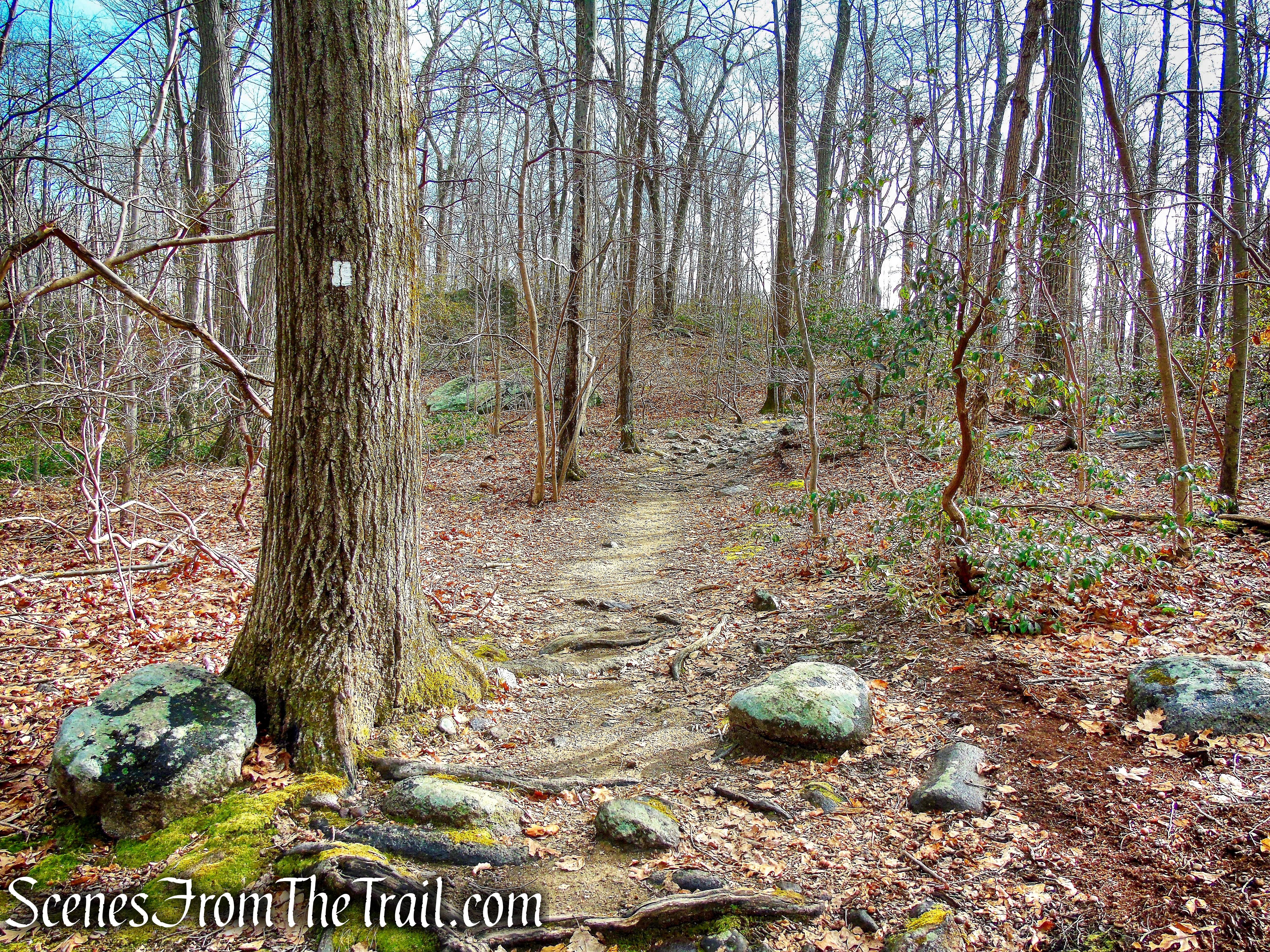 White Trail - Pyramid Mountain Natural Historic Area
