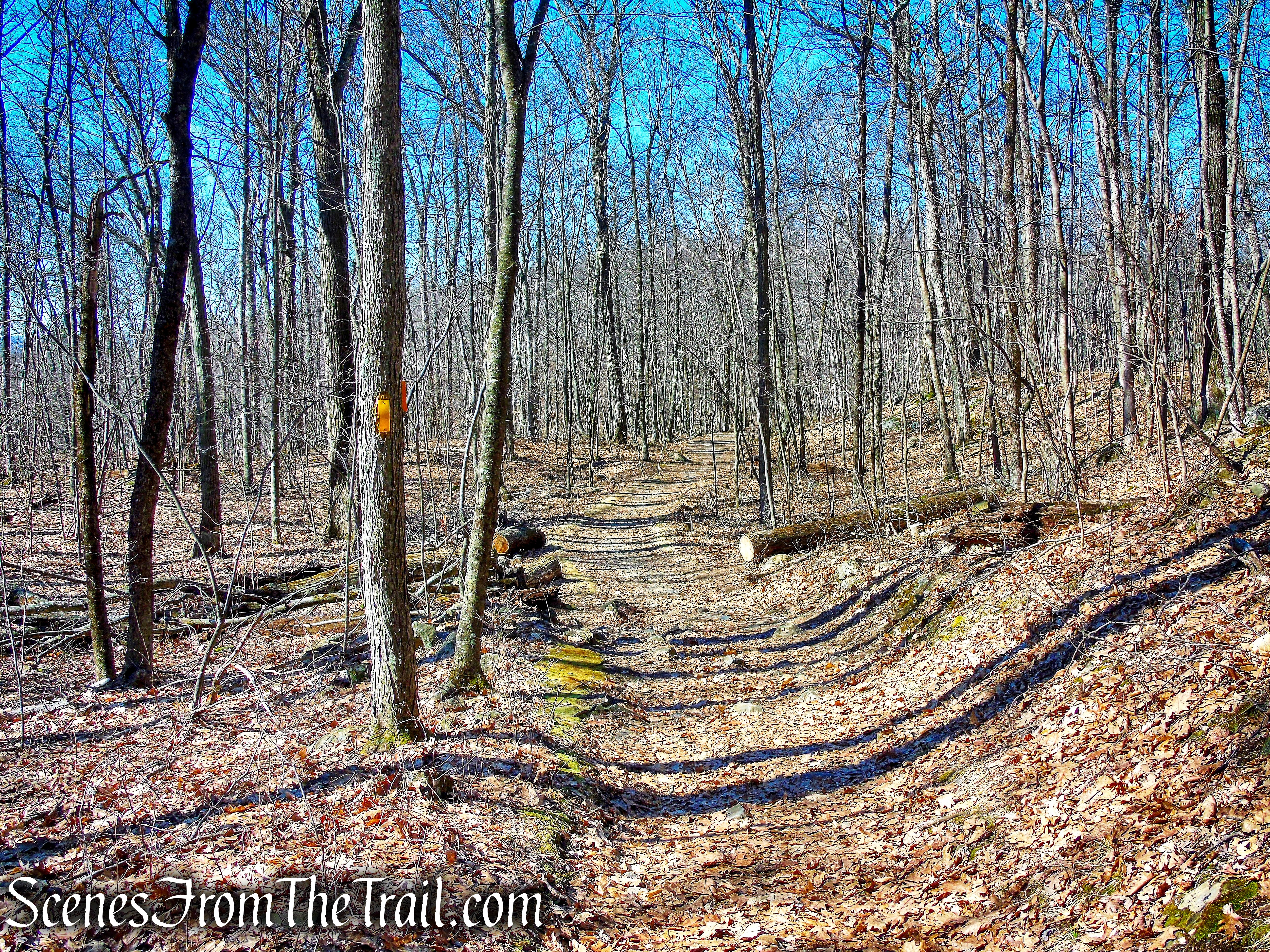 Tower Trail - Mount Tom State Park