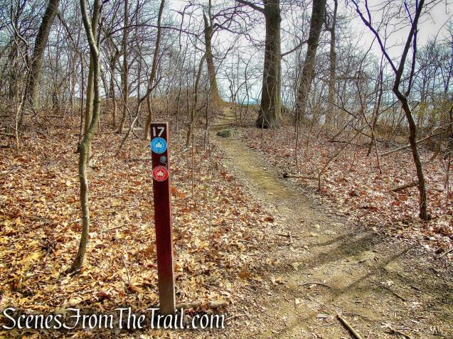 viewpoint - Kazimiroff Nature Trail