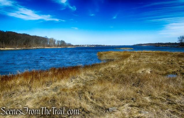 Salt Marsh - West Twin Island