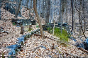 Blue Trail - Buttermilk Ridge County Park