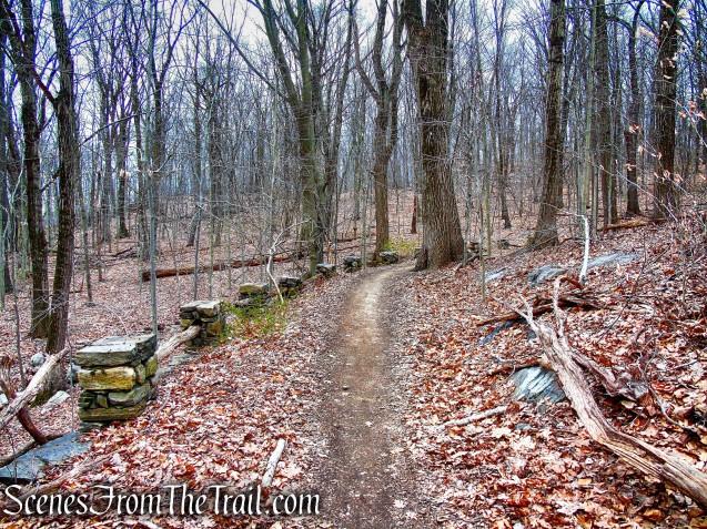 Blue Trail - Glenville Woods Park Preserve
