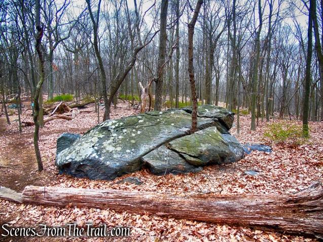 Blue Trail - Taxter Ridge Park Preserve